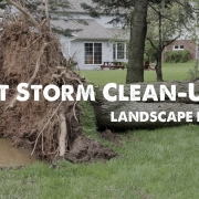 storm clean up tips from sacramento rental property management